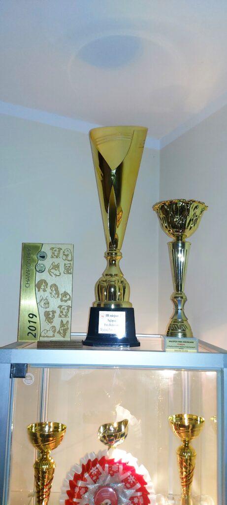 Trofea1